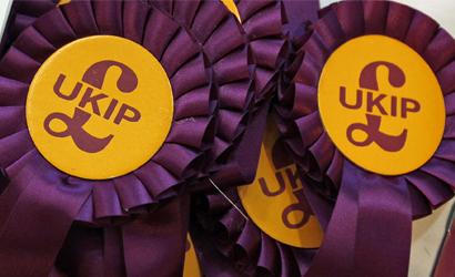 UKIP Logo rosettes