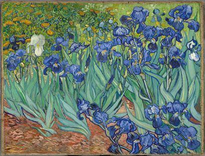 Vincent_van_Gogh Irises